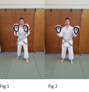Pad holding fig 1 & 2