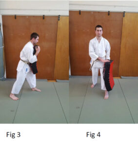 Pad holding fig 3 & 4